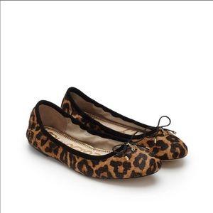 NIB Sam Edelman Felicia Leopard Brahma Flats